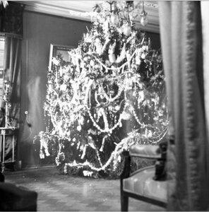 Наряженная новогодняя елка