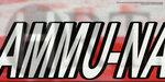 ammu-nation-tex (1).jpg