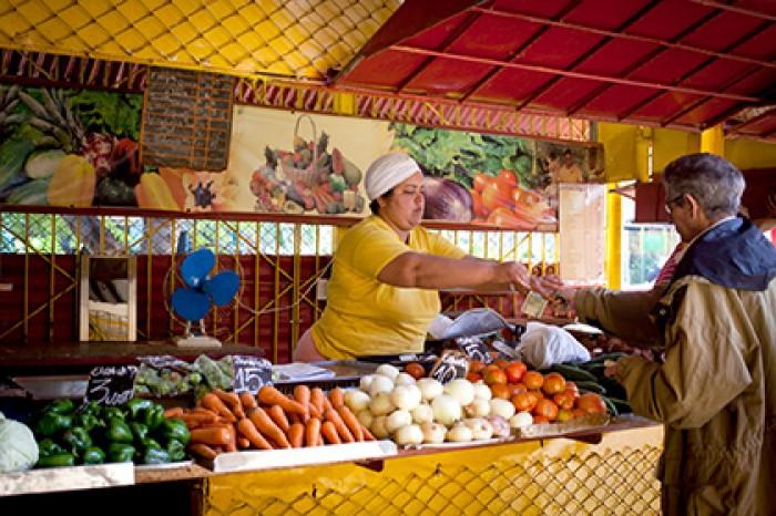 Цены на продукты питания Кубы упадут на двадцать процентов
