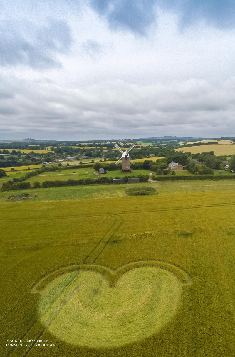 Crop circle Wilton Windmill, Grafton, Wiltshire, UK 15 July 2016