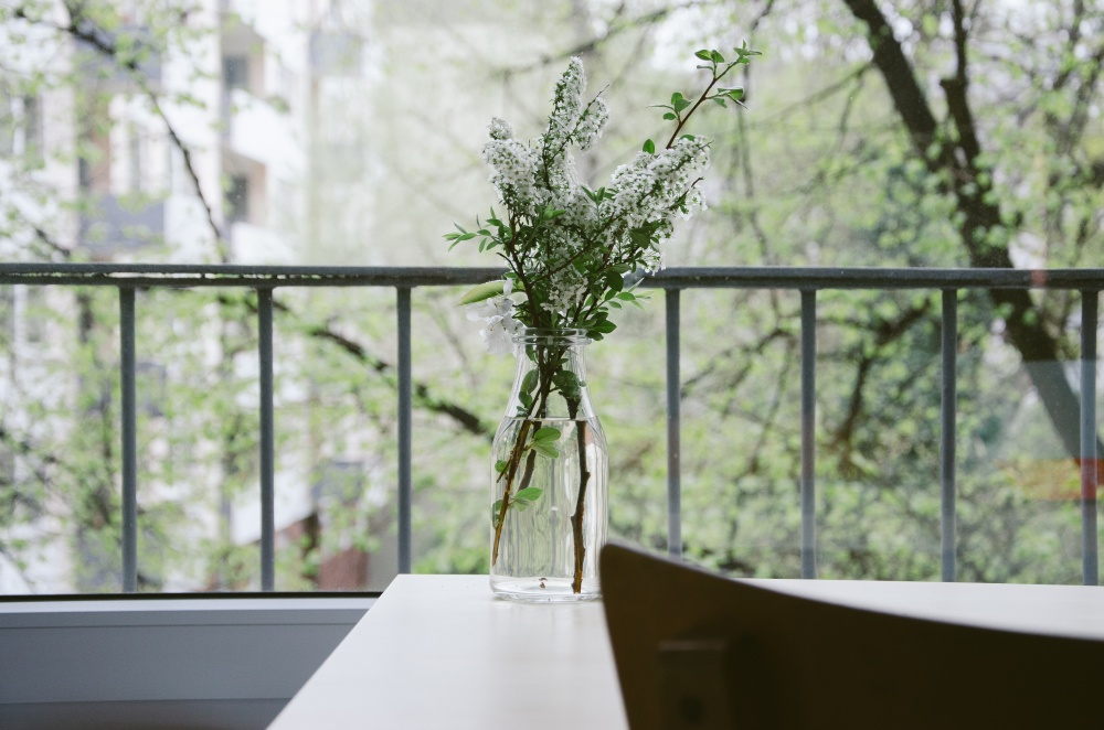 Ветки цветущих абрикоса или вишни впростой стеклянной таре принесут ароматы весны прямо вдом. Можн