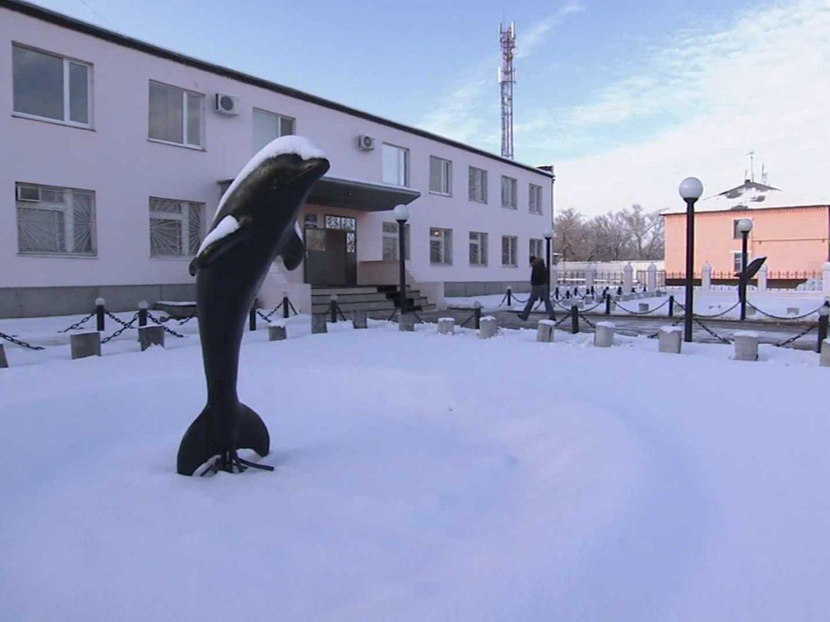 Свое неофициальное название «Черный дельфин» тюрьма получила благодаря статуе перед входом, сделанно