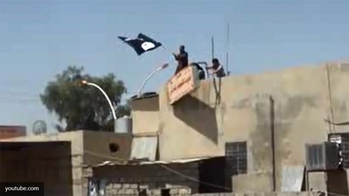 Турция: ВСирии убиты неменее 100 боевиковИГ
