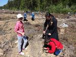 Акция Лес Победы в Раменском