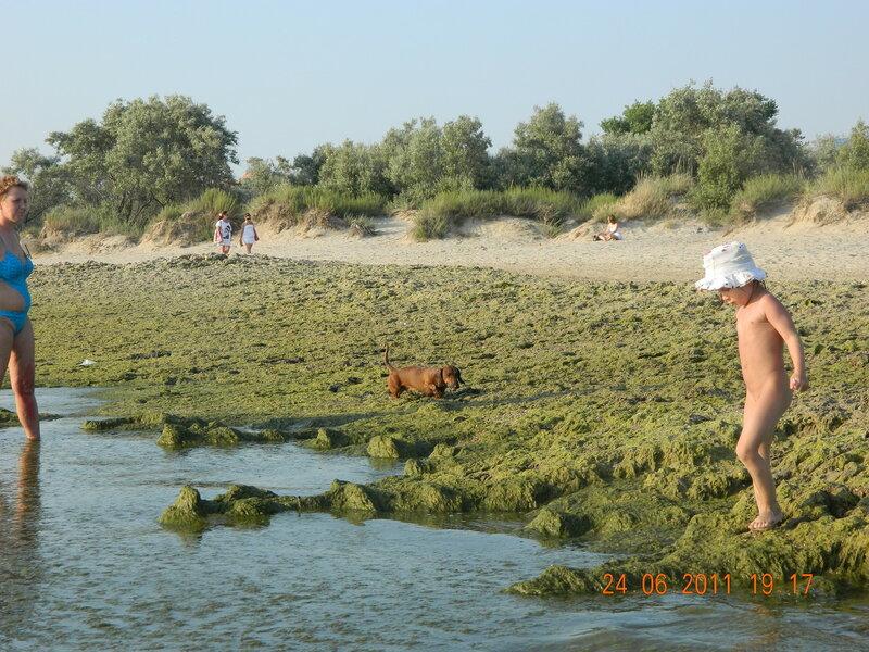 Тина на пляже Анапы