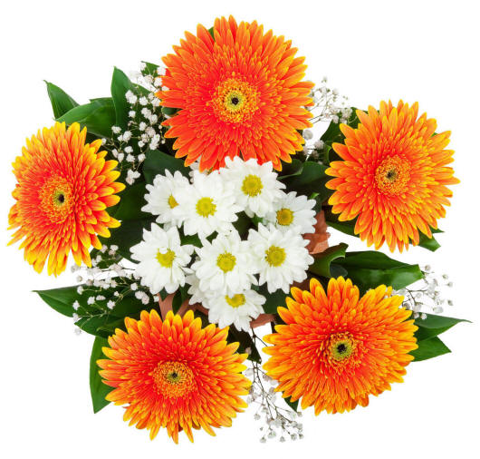 Фото квітів букетів