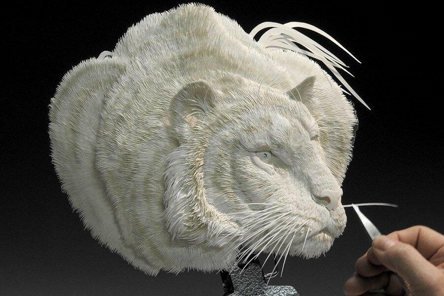 Новая скульптура из бумаги Calvin Nicholls