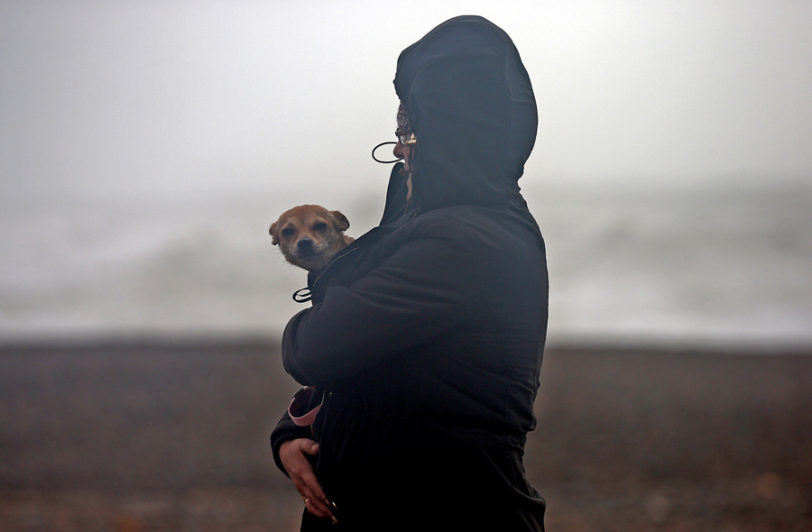 A woman shelters her small dog as she walks along a beach on February 8, 2016, in Newhaven, East Sus