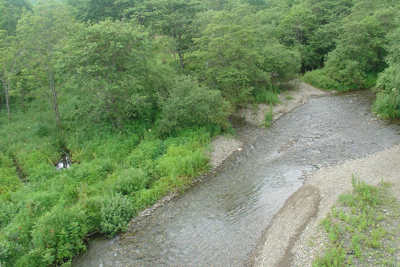 Приморский край, Хасанский р-он, Сухая речка.