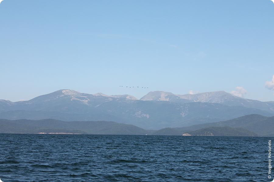 фото чивыркуйского залива, перелетные птицы, Байкал