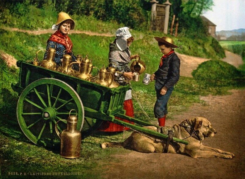 Milksellers, Brussels, Belgium3, ca. 1890-1900.jpg