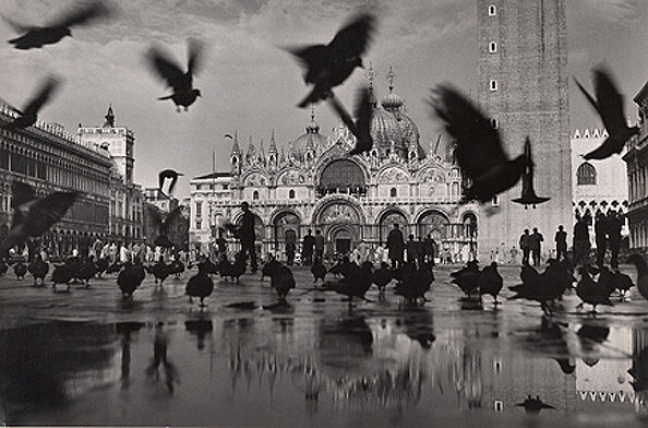 Pigeons on the Piazza St. Marco, Venice, 1949