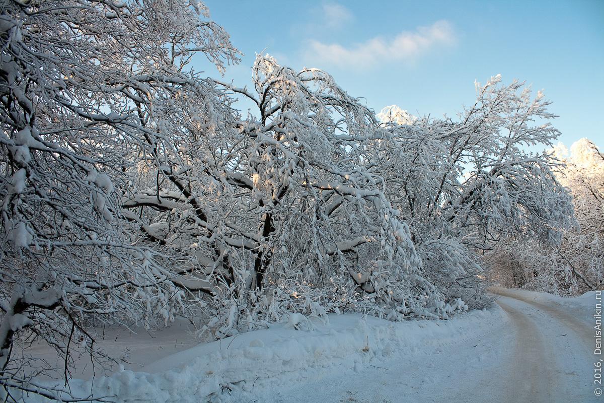 Зима на кумысной поляне 7