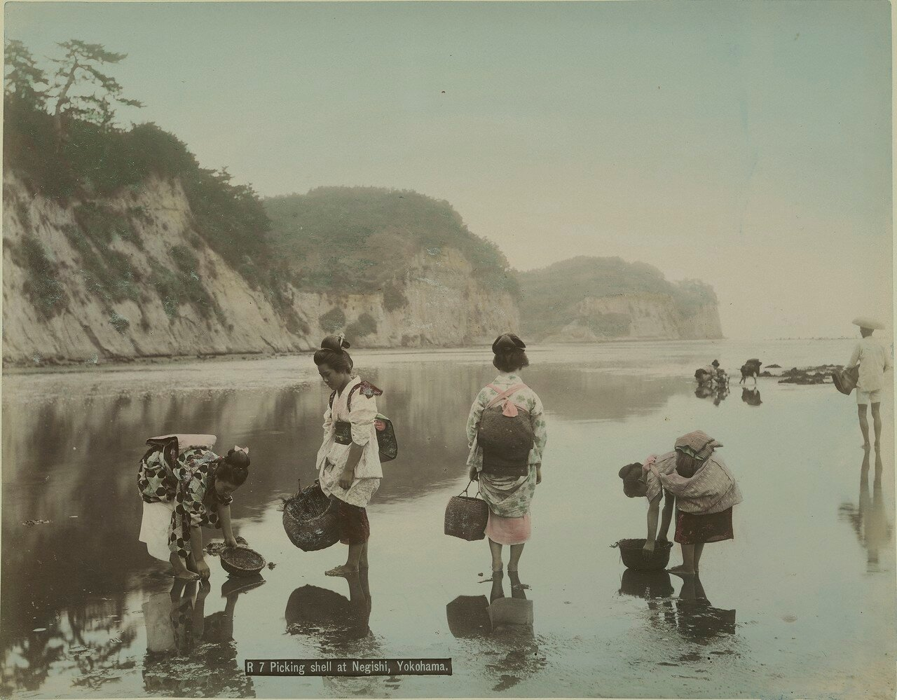 Иокогама. Сбор раковин на Негиши