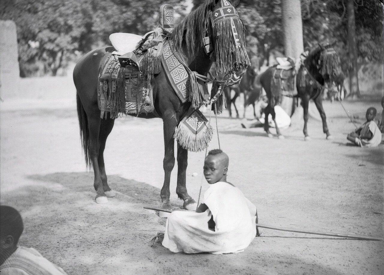 Уагадугу. Во дворе дворца Моро Наба оседланная лошадь одного из вождей
