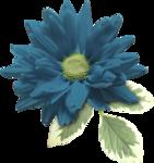 Sky_VG_Flower5.png