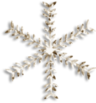 RR_Winter'sBeauty_Element (6).png