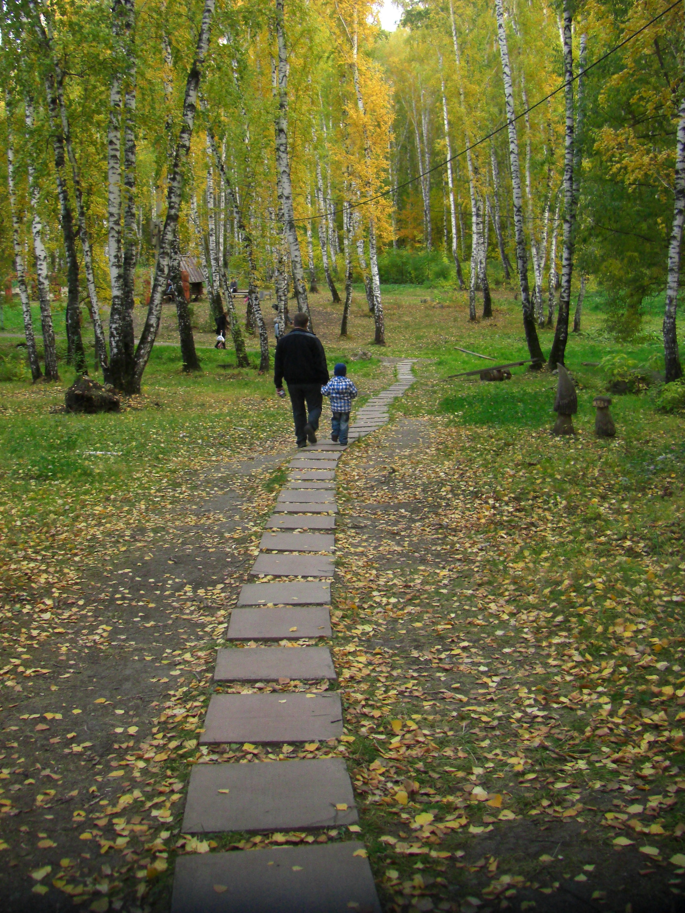 Извилистые дорожки парка (18.10.2014)