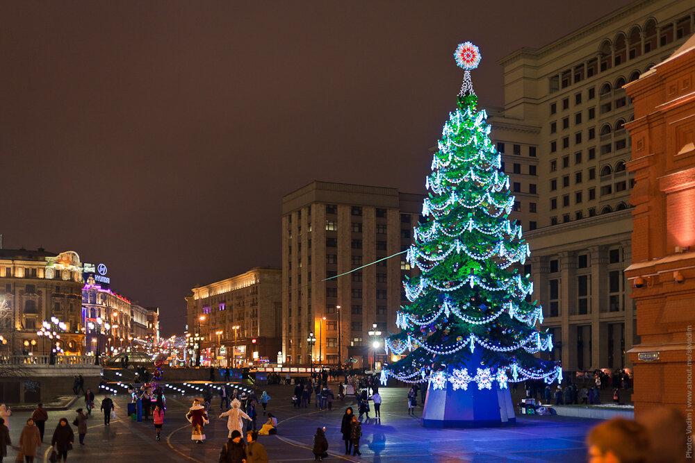 Новогодняя ёлка «Домашняя» на Манежной площади