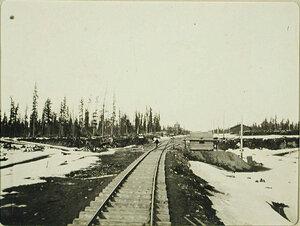Вид части железнодорожного полотна и сторожки в районе станции Кедровой