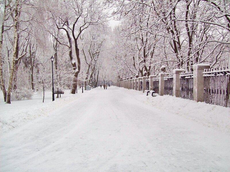 Дорога вдоль забора стадиона Динамо