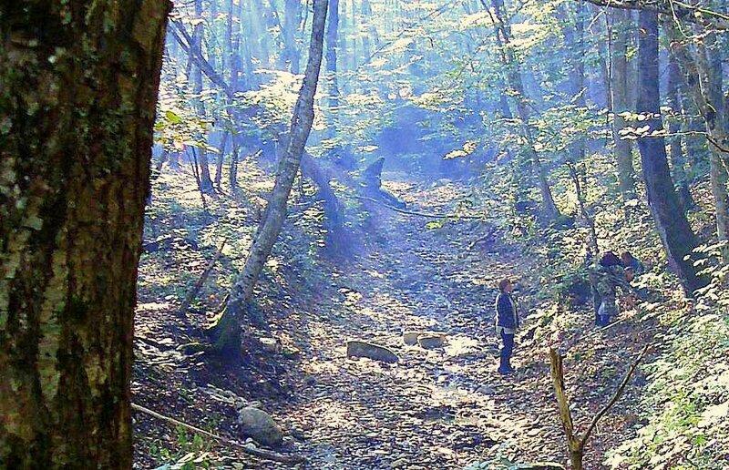В лесу, под Горячим Ключом, на слёте... (195).JPG