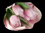 nicole-mist fleur.png