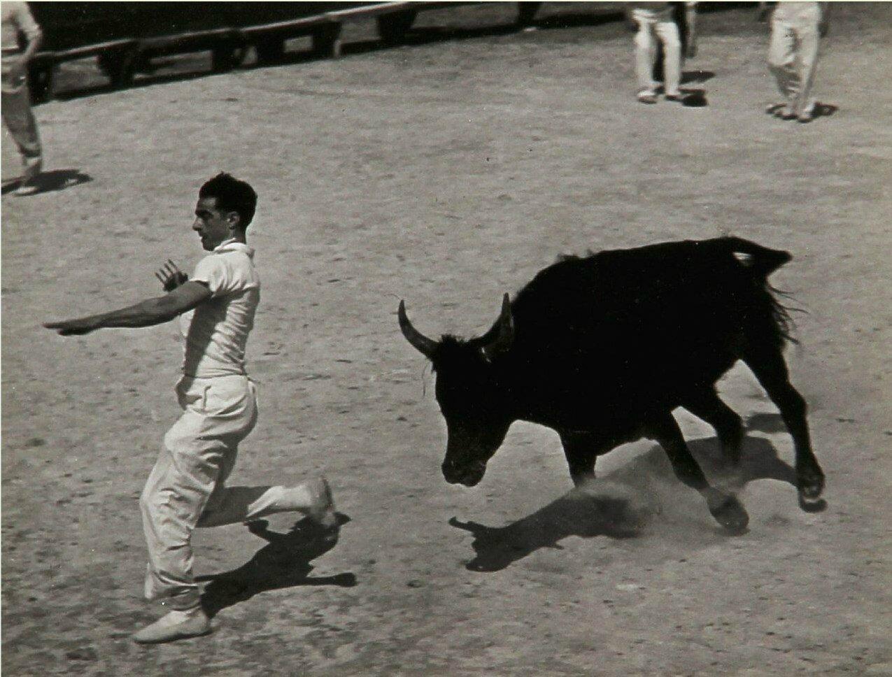 1936.  Гонки с быками в Провансе, Сент-Мари-де-ла-Мер. Часть 2
