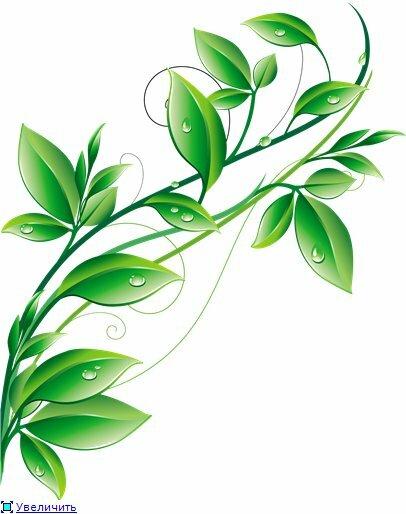 Letitbit.  Скачать клипарт весенние листья - векторный клипарт.  Зеленые листья кустов и деревьев только что...