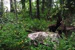 Камень Оравуярви: с северо-востока