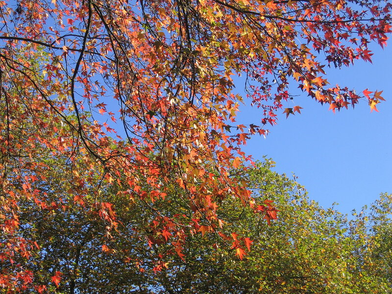 Осень в Уэльсе