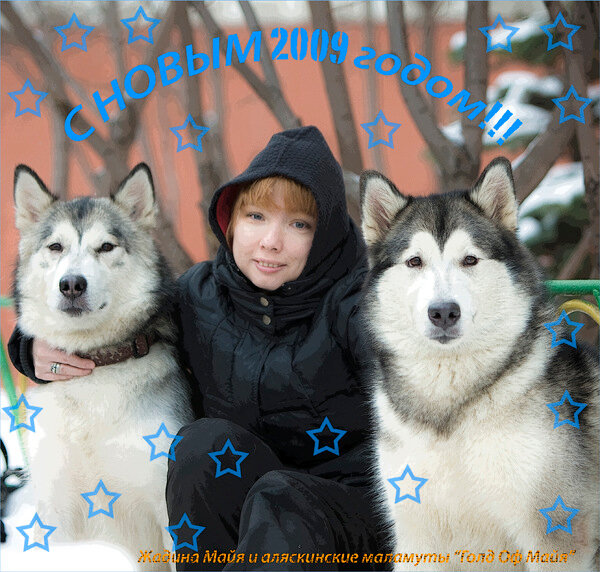http://img-fotki.yandex.ru/get/2708/jadina-malamute.4c/0_29136_354d0b6a_XL.jpg