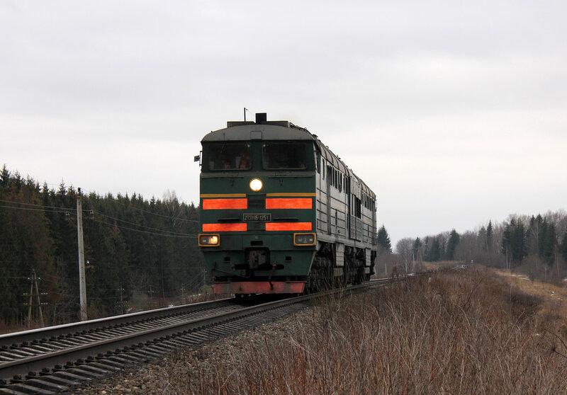 2ТЭ116-1251 на перегоне Новосокольники - Шубино