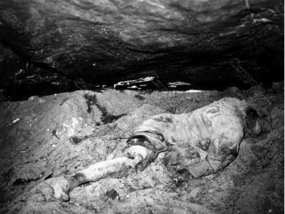 10. Найденное тело Жаннин Келлер