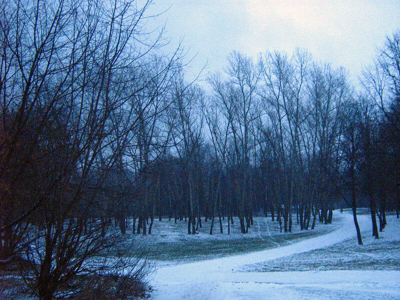 Зима в сквере