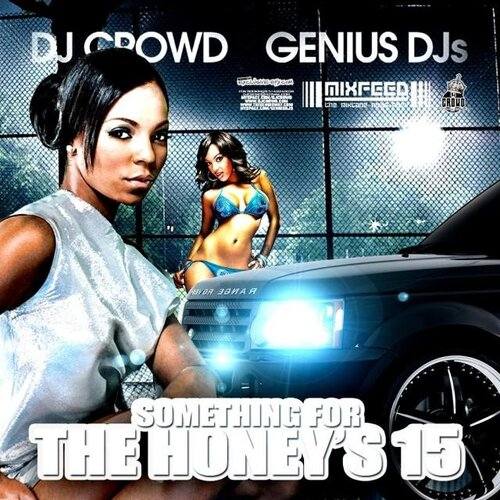 DJ Crowd - Nothing But Crowd Hitz Vol 8 (90's Edition)/Something For The Honeys 15 (2 Tapes/1 Link)