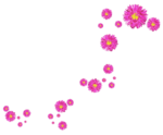 sekadadesigns_pinkflowers_element(24)