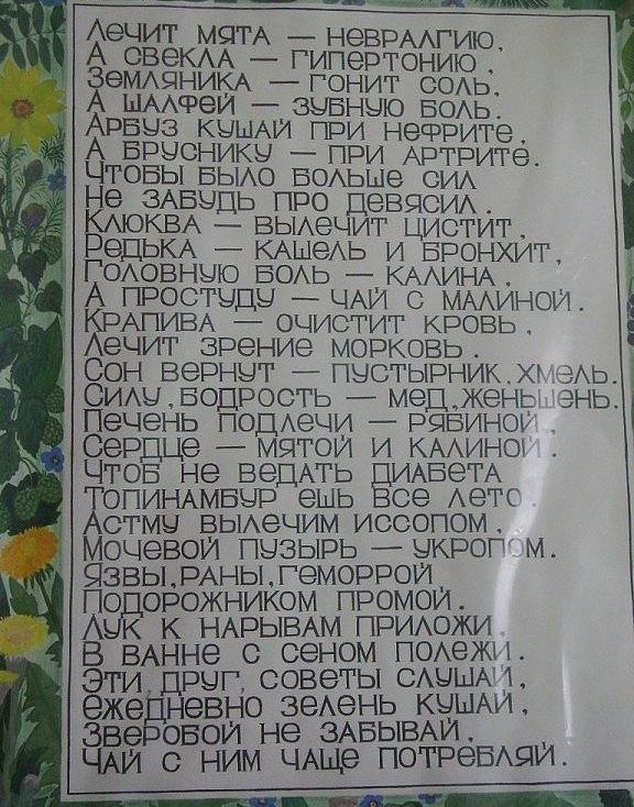 Стих-запоминалочка о лекарственных травах