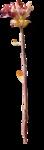 ldavi-fallingleavesautumntea-driedflower14.png