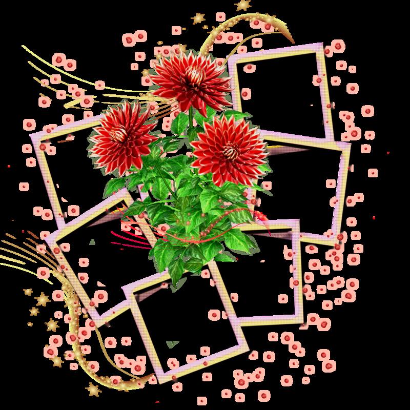Фоторамки цветы на несколько