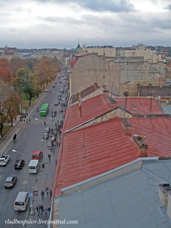 2014-10-18 Львів, панорама, дівчата та кумпель_(8).JPG