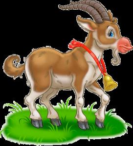 Смешные овцы и козы прикольные картинки коз и овечек
