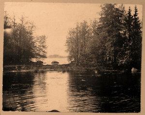 Вид части  пруда  в одном из уголков усадебного парка.