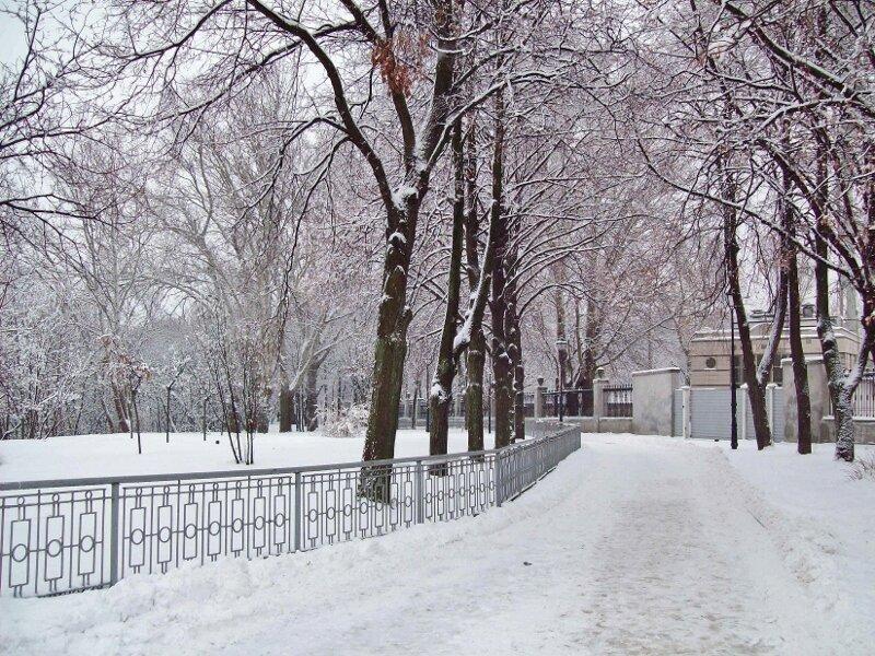 Парковая дорожка перед мостиком Влюбленных