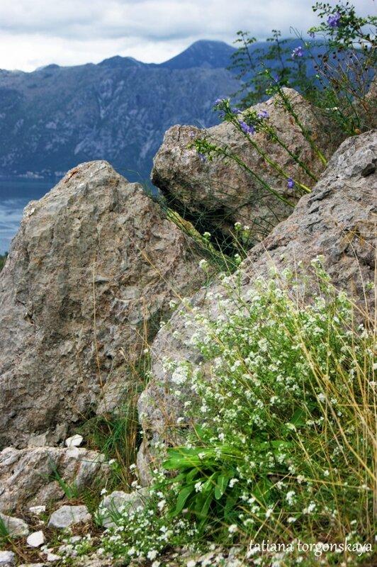 Камни на обочине