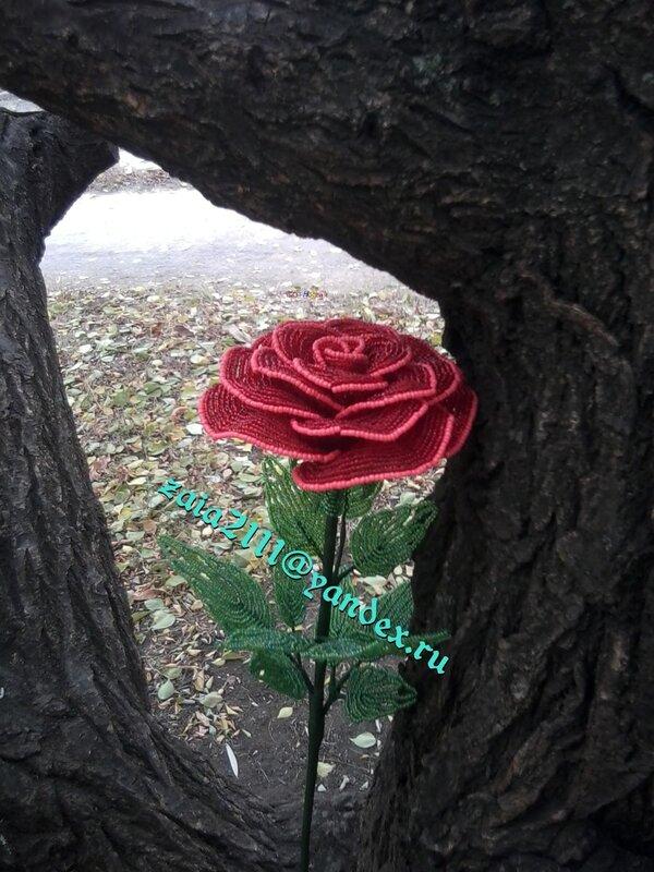 Для дома Роза из бисера (Цветы декоративные) .
