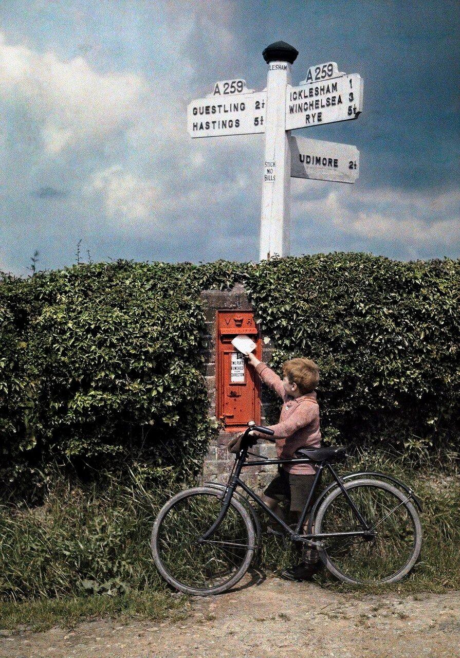Маленький мальчик бросает письмо в почтовый ящик в живой изгороди, Сассекс