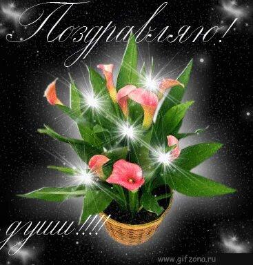 http://img-fotki.yandex.ru/get/2710/irina261207.35/0_21a62_9622726b_L.jpg