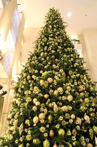 72 ребенка из Бурятии посетит 25 декабря Кремлевскую елку.