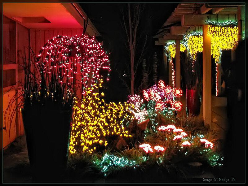 Garden d'Lights 2008 - 069